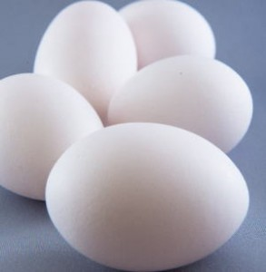 インフルエンザ 卵