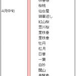 伊豆高原 桜 開花時期