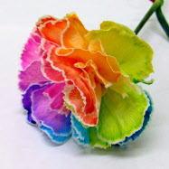 母の日 プレゼント 花 七色