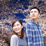 京都で夜桜デートスポットと食事は?ライトアップの時間も知りたい!