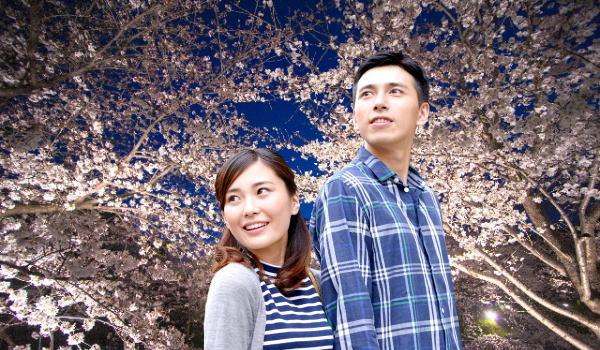 夜桜デート 京都
