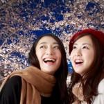 京都の夜桜をライトアップでランキング10選を紹介!開花予想は?