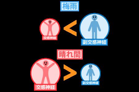 梅雨に副交感神経が優位→晴れ間で交感神経が優位になり、バランスが変化する