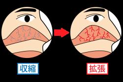 体を温めようとして鼻の血管が拡張する