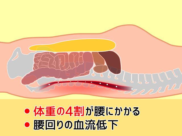 腰にかかる内臓の重さ
