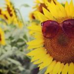紫外線対策のサングラスのおすすめは?紫外線カット表記と選び方も!